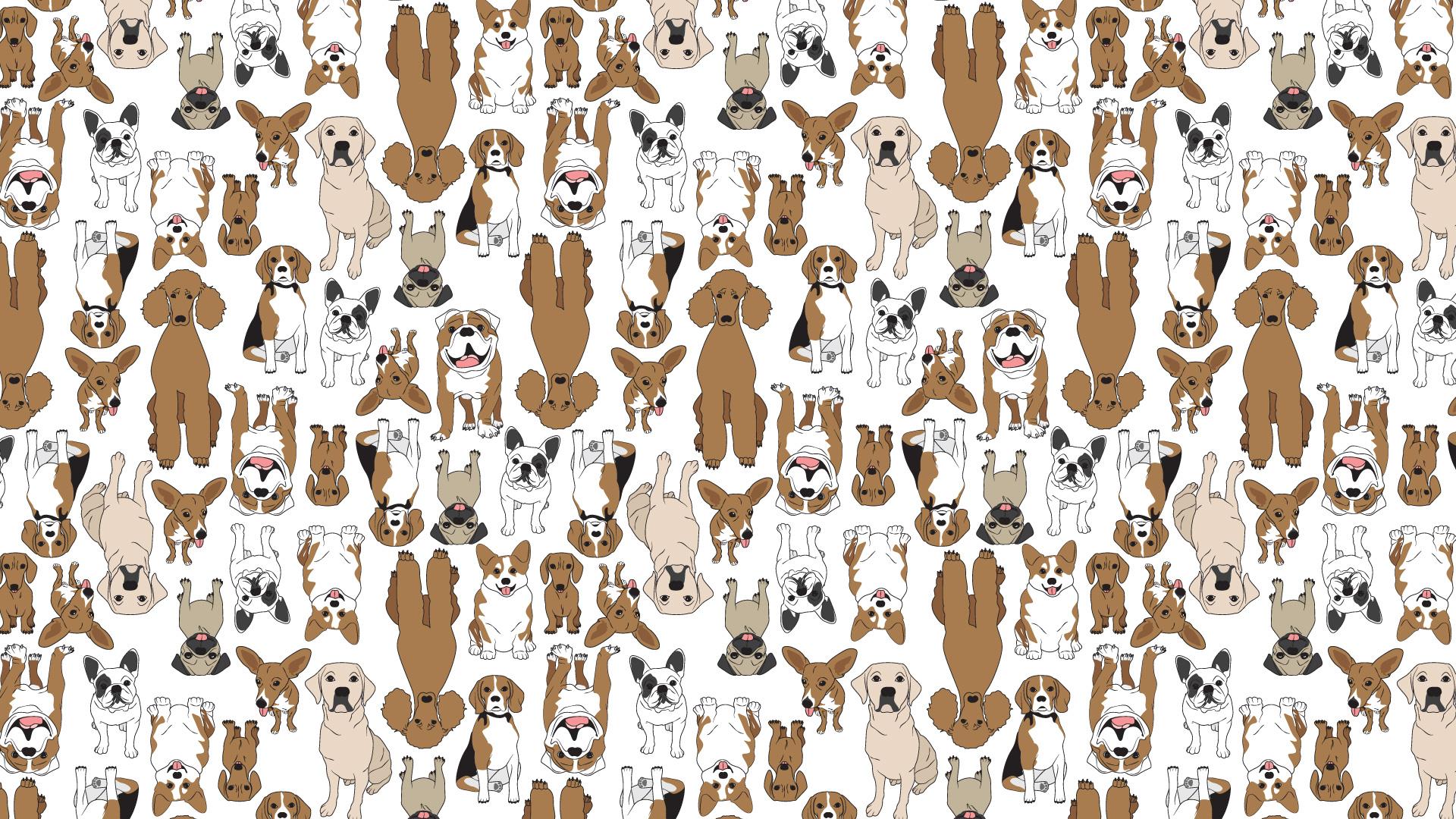 dogprint-web